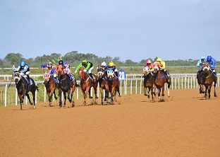 Fairview moved to Polytrack