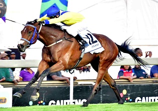Zillzaal gives Tarry hat trick