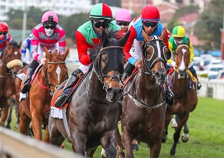 Gold Cup for S'manga