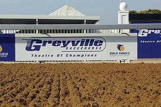 Arctic Princess to benefit from move to Greyville poly