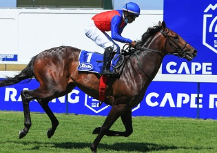 Bet on the best at Greyville