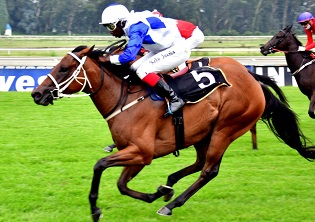 Fortune runner to arrive On Cue